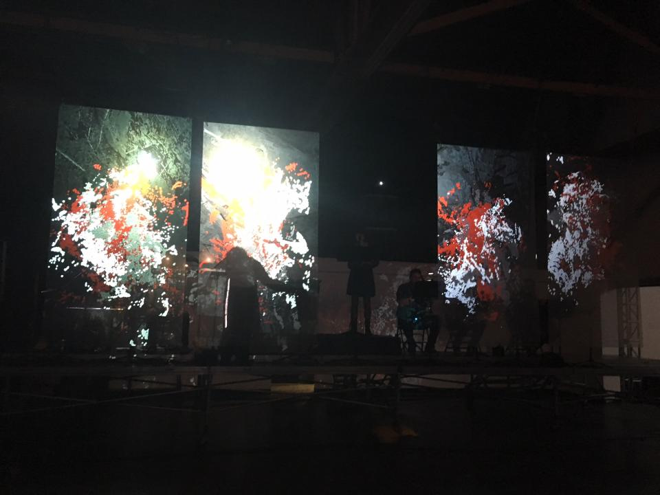 "photograph of the projections of ""In the dream..."""